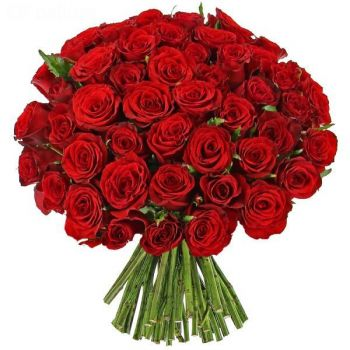 Fifty Long Stem Red Roses Hand Tied