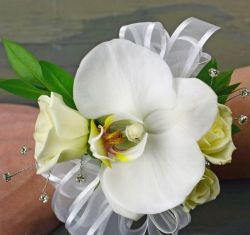 Phalaenopsis Orchid & Rose Corsage