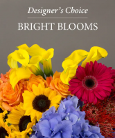 Bright Blooms