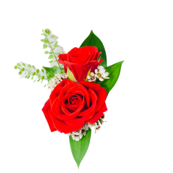 Double Red Rose Boutonniere