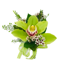 Green Orchid Corsage